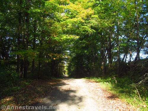 The dirt road that's part of the Genesee Valley Greenway, New York
