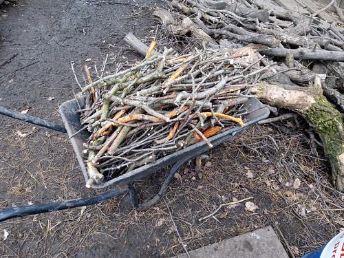 wheelbarrow of sticks Oct 19