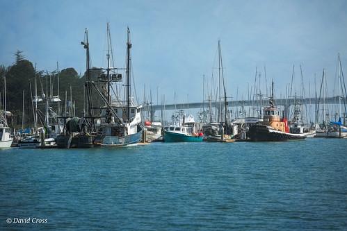 seaport california pacificcoast portofhumboldtbay pacificocean maritime lightroom6 canon70200mm28l topazstudio humboldtcounty portofeureka canon5dmarkiii landscape