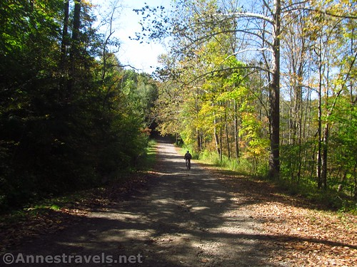 Riding the Big Bend Road in Letchworth State Park, accessible from the Genesee Valley Greenway, New York