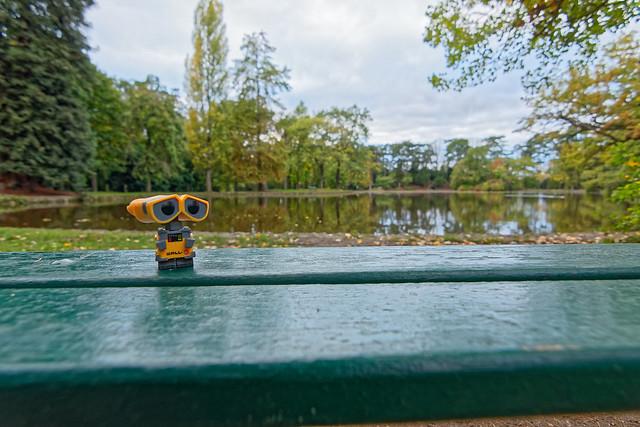 Wall-E en balade dans le bois de Boulogne