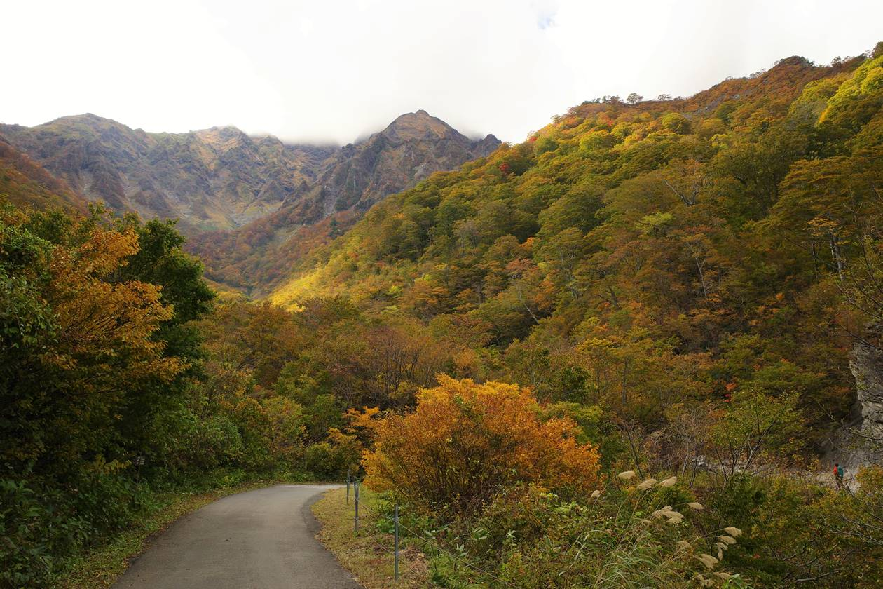 マチガ沢から眺める谷川岳と紅葉