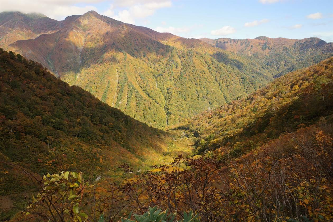 谷川岳の全山紅葉