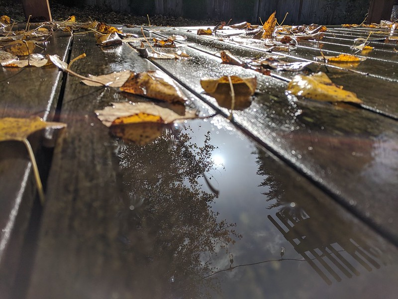 Rainy Day Photography: Day 9