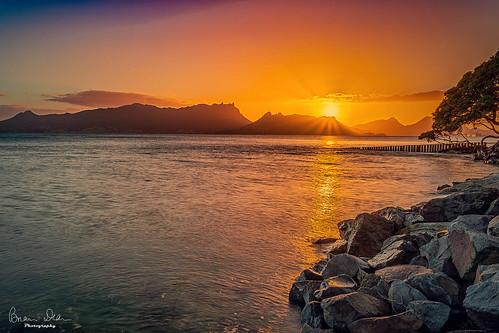 facebook onetreepoint flickr 2019tour northisland sunrise housesit slideshow northlandregion newzealand