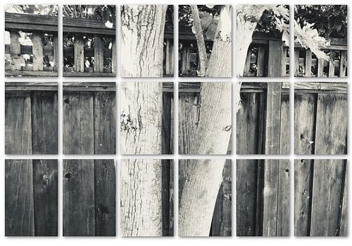 Fences Squared