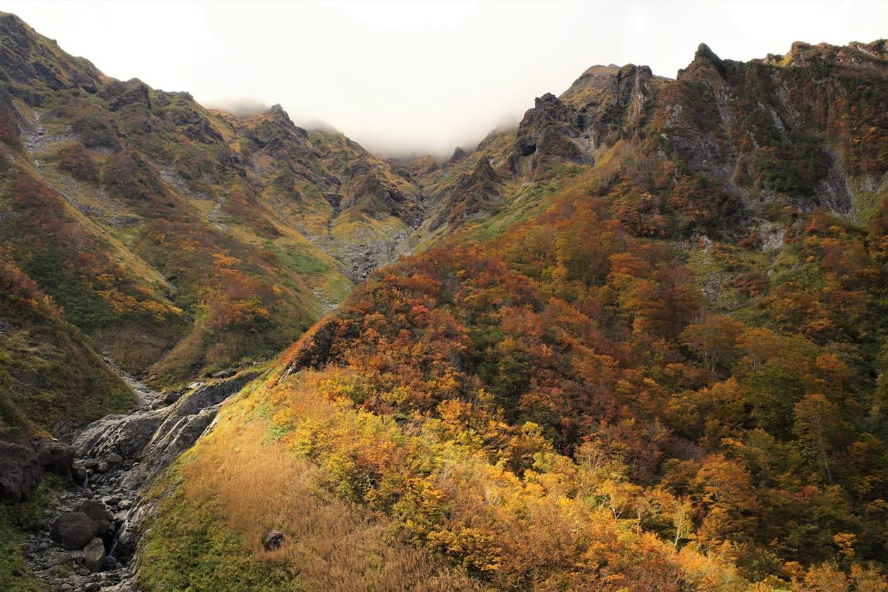 谷川岳 マチガ沢の紅葉風景