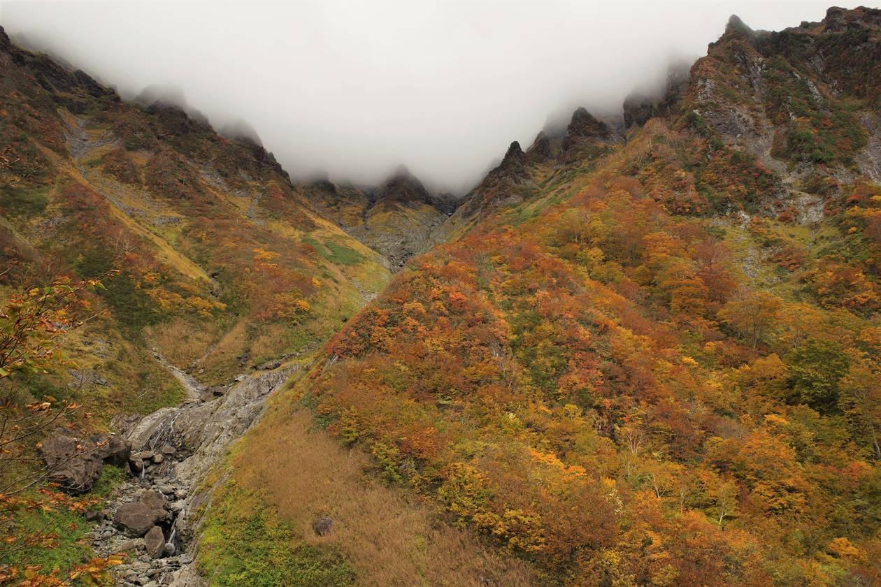 厳剛新道 第一見晴から眺める谷川岳とマチガ沢の紅葉