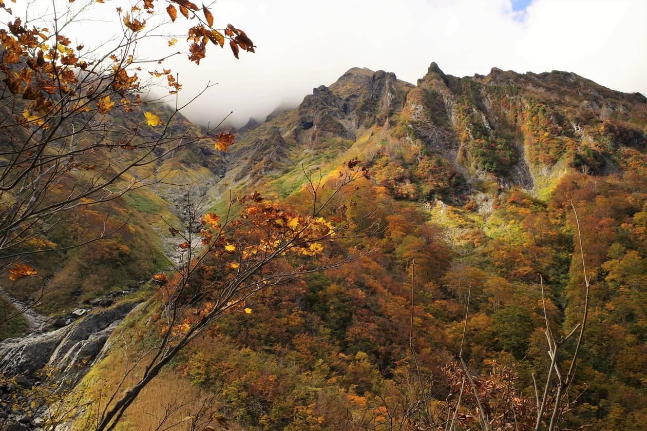 谷川岳の紅葉風景
