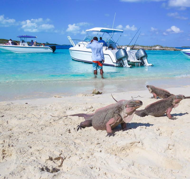Bahamas-239