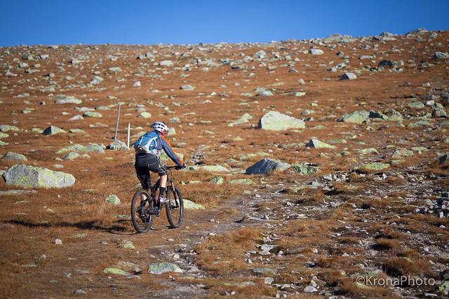 Mountain biker, Høgevarde, Norway