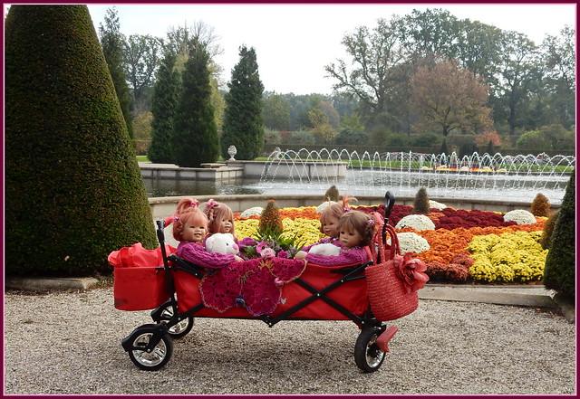 ❤️🍁🌞🍂💗 Kindergartenkinder im Schlosspark-Arcen ❤️🍁🌞🍂💗