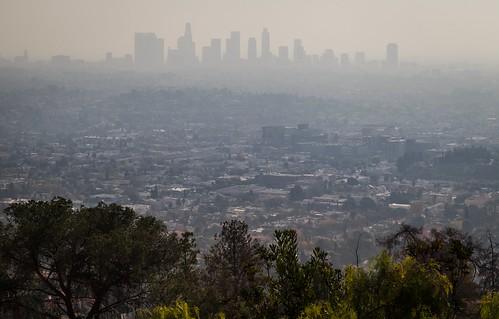 losangeles california usa skyline silhouettes