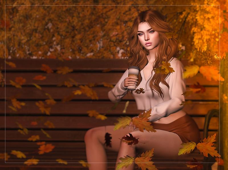 An autumnal moment..