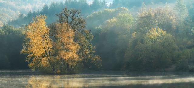 Foggy morning pano