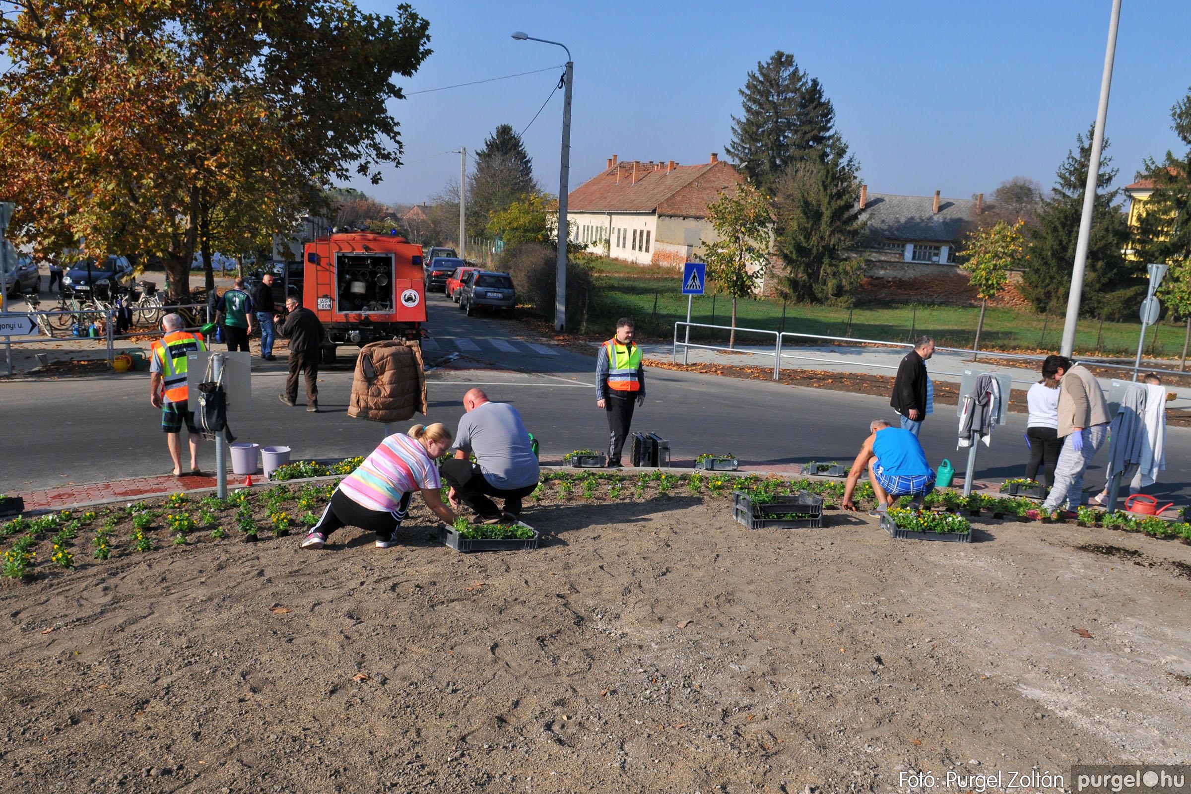 2019.10.26. 013 Árvácskaültetés a körforgalomba - Fotó:PURGEL ZOLTÁN© D3K_8603q.jpg