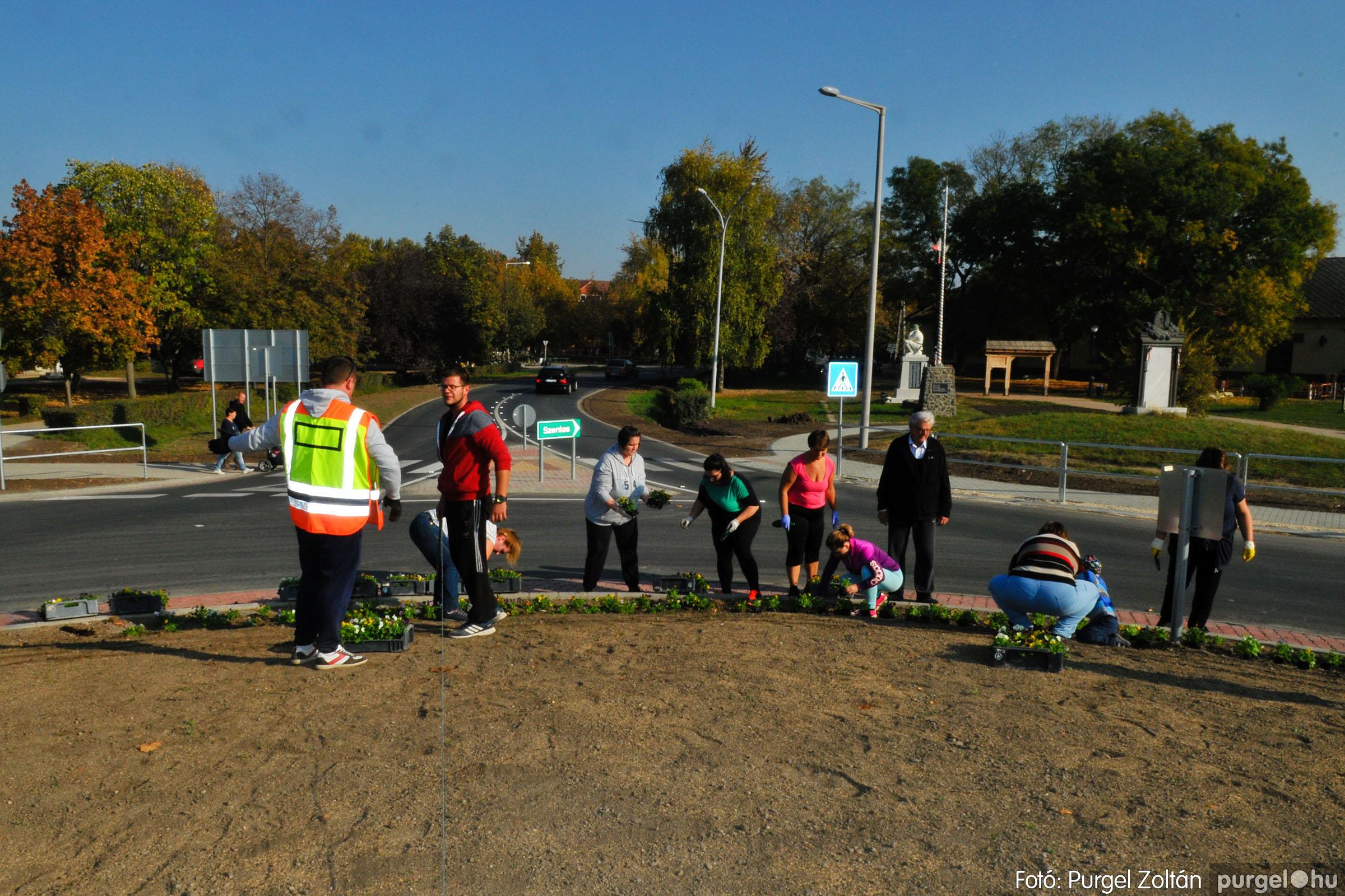 2019.10.26. 008 Árvácskaültetés a körforgalomba - Fotó:PURGEL ZOLTÁN© D3K_8593q.jpg