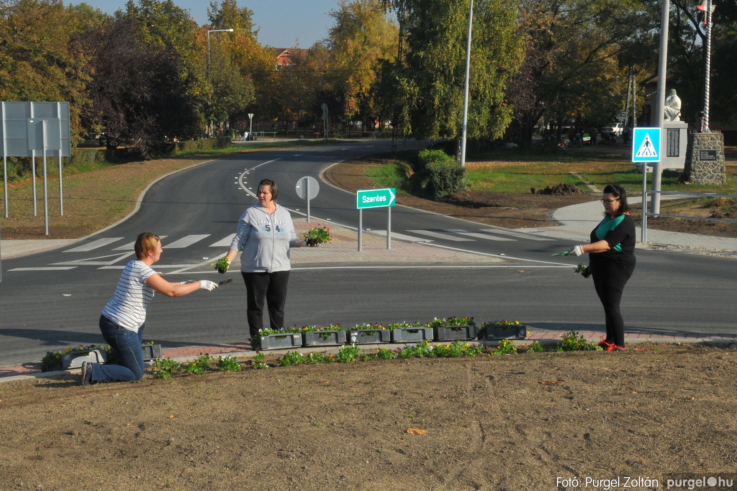 2019.10.26. 002 Árvácskaültetés a körforgalomba - Fotó:PURGEL ZOLTÁN© D3K_8577q.jpg