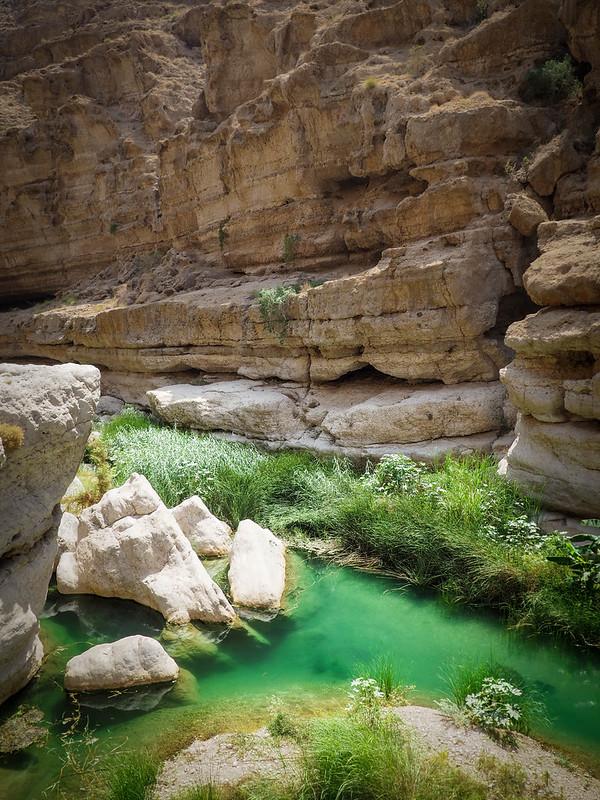 Wadi (20)