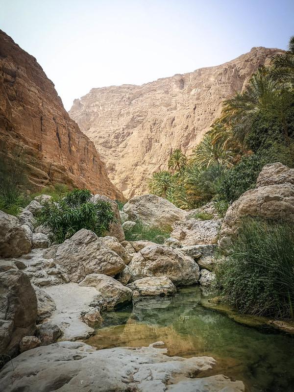 Wadi (40)