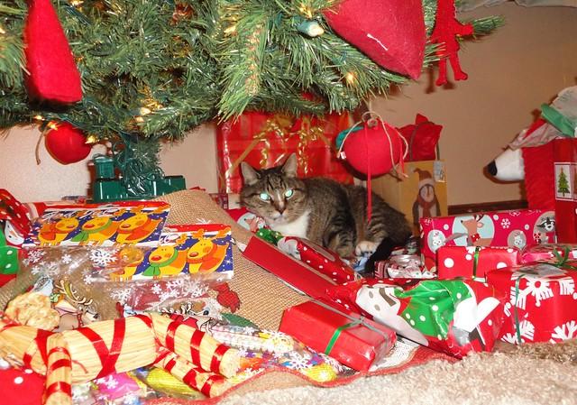 Christmas 2013 with Stabbur