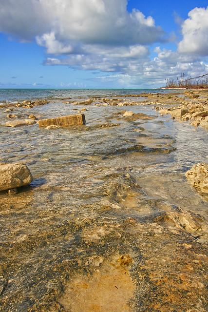 Rocky Shoreline in the Bahamas