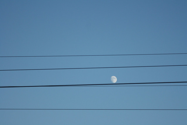 Wired Moon