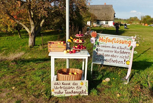 Here you can buy apples and old stuff from a beautiful old fisher house!