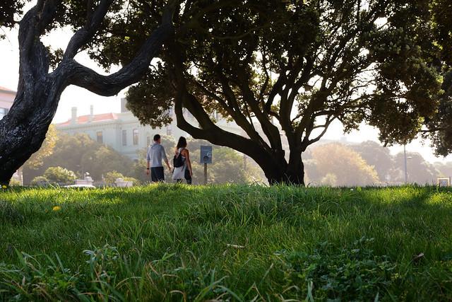 Saturday morning walk in Foz do Douro gardens