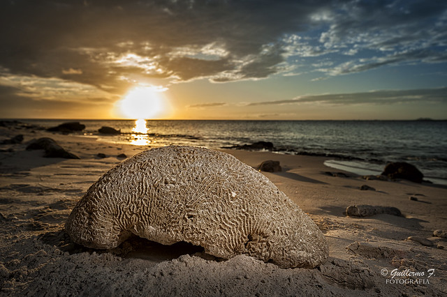 Atardeceres de Bonaire