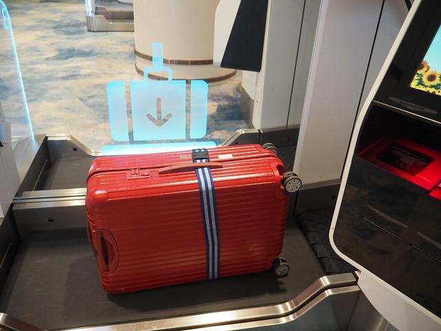 P9175448 シンガポールチャンギ空港 Jewel(ジュエル) アーリーチェックイン Singapore changi ひめごと