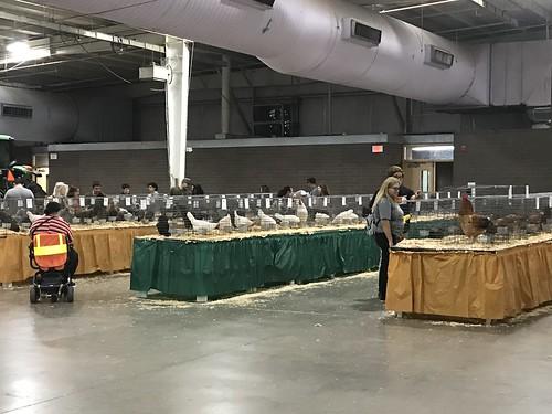 Arizona State Fair-20191025-2174