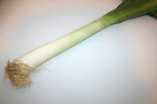 08 - Zutat Lauch / Ingredient leek