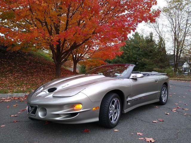 My 98 Buick Riviera - Page 13 48964885256_b5bcbb2437_z