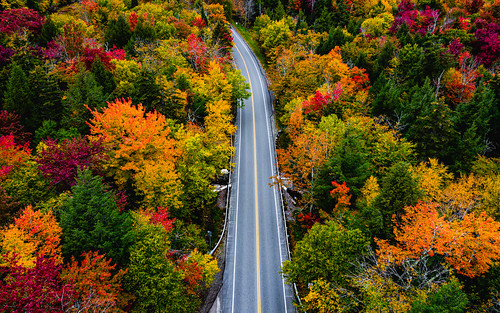 autumn landscape plants nature city aerial traffic trees maple drone road stowe travel america northamerica lamoillecounty vermont fallcolours unitedstates smugglersnotch season foliage fall theunitedstatesofamerica us usa unitedstatesofamerica countryroad countryside