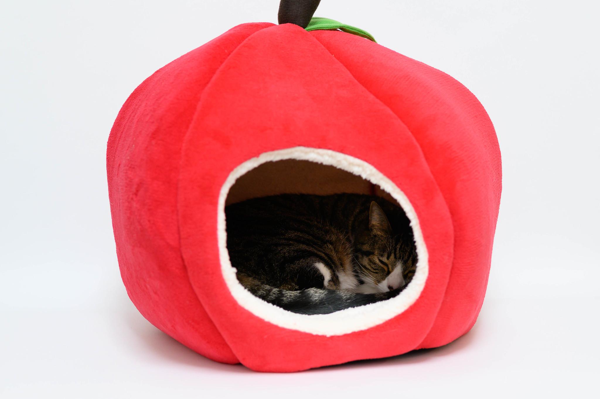 モーチフペットベッド(りんご)