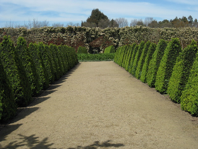 Looking South from the Centre of the French Provincial Garden - Alowyn Gardens, Yarra Valley