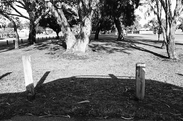 Another Day, Yet Again, More of the Same, Leica R8, Fomopan 200, Bullcreek, Rossmoyne, Shelley, Trees, Canning River, Tribute Cafe, Ambulance, Laurel, Power Lines
