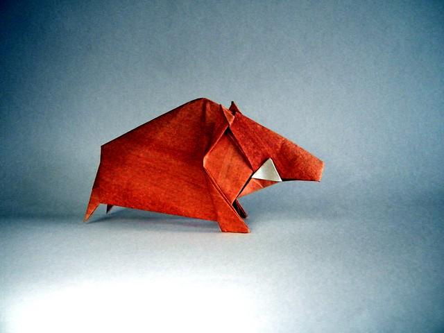 Pentagon wild boar - Seiji Nishikawa