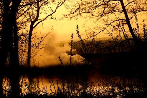 sunrise smoke smouldering goldenhour lake waterside