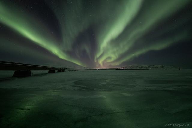 Frozen lights