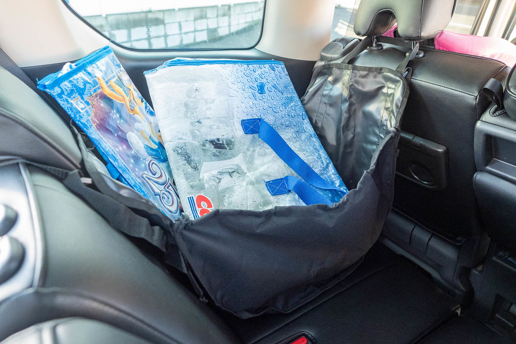 Car_Bag-13