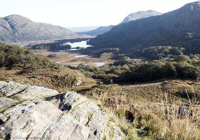 Ladies' View, Killarney National Park, Ring of Kerry, Ireland