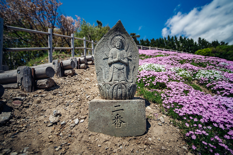 北海道攝點筆記|HOKKAIDO