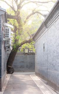 hutong close to behai park, alley