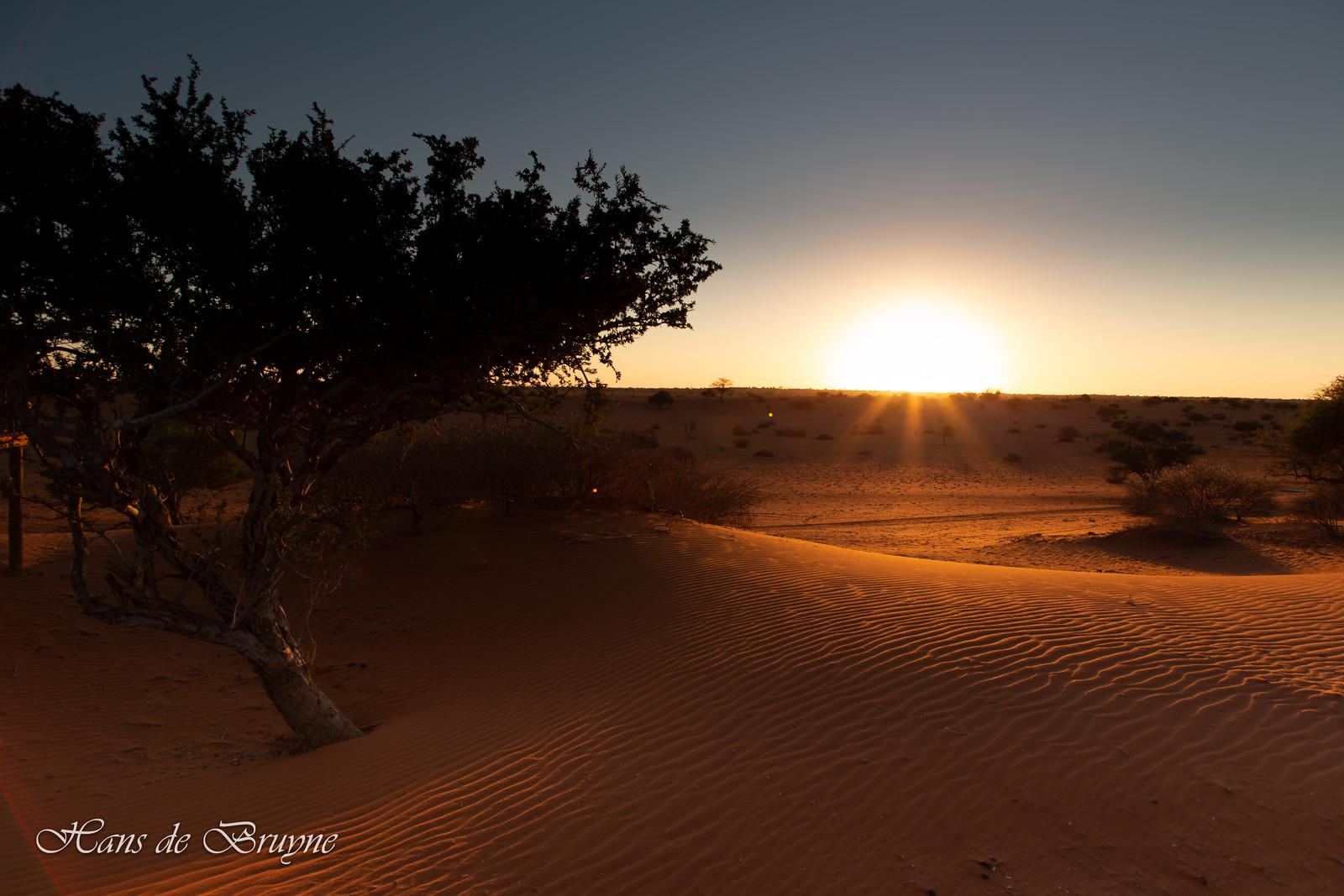 Sunset at Kalahari Desert