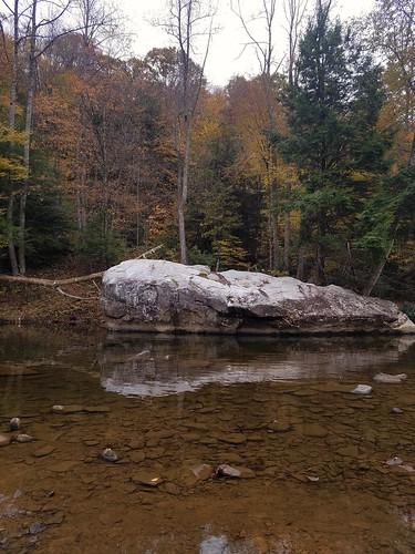 creek westvirginia fall autumn rock reflection water landscapes cowen wildandwonderful scenic scenery leaves trees