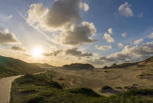Sunny dunes