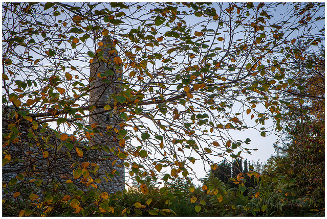 Glendalough in the fall