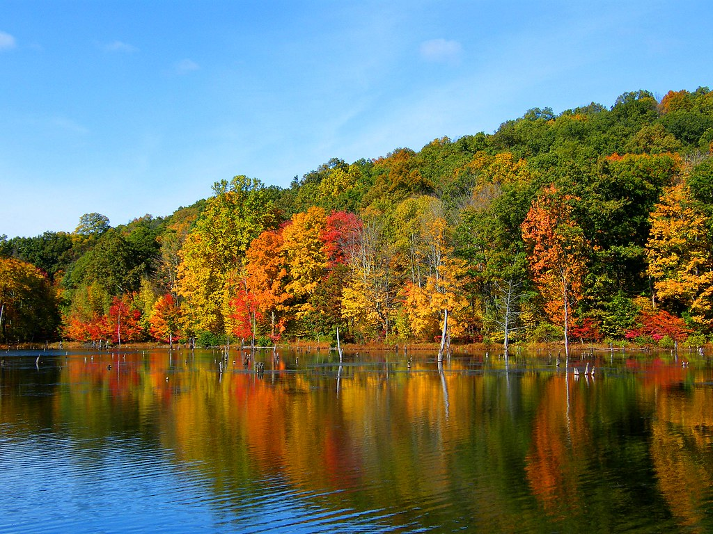 Colors in Harriman Park